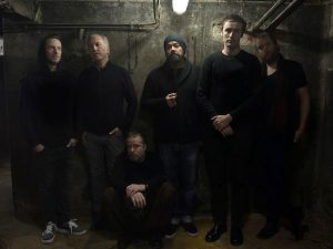 Ulver in basement